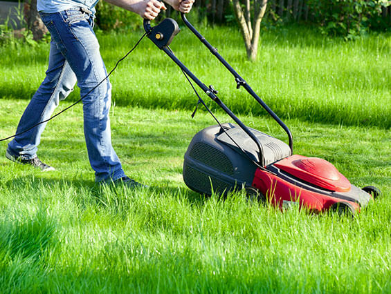 Professional Lawn Movers in UK